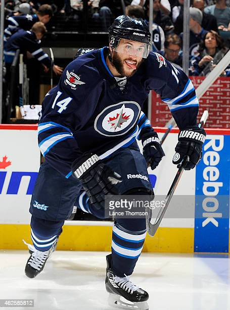 Anthony Peluso of the Winnipeg Jets hits the ice prior to puck drop against the Dallas Stars on January 31 2015 at the MTS Centre in Winnipeg...