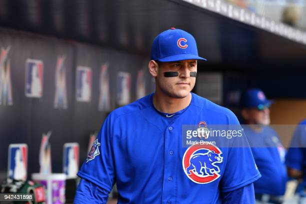 Anthony Rizzo of the Chicago Cubs in the dugout before the game against the Miami Marlins at Marlins Park on April 1 2018 in Miami Florida Anthony...