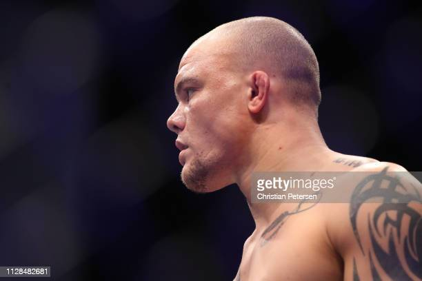 Anthony Smith stands in the octagon in his UFC light heavyweight championship bout during the UFC 235 event at TMobile Arena on March 2 2019 in Las...