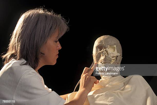 Anthropological sculptress Elisabeth Daynes begins to apply clay representing fatty tissue to Otzi's skull on October 1 1997 in Paris France Otzi is...