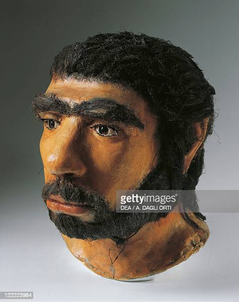 Anthropology Reconstruction in wax of the head of Neanderthal man