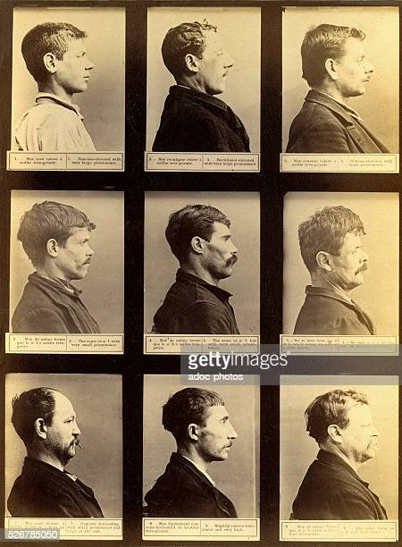 Anthropometric system of Alphonse Bertillon Comparative forms of the nose Paris In 1894