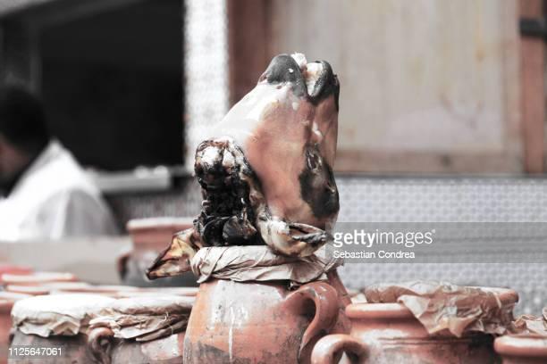 anthropomorphic animal face, fes, morocco, africa - agadir photos et images de collection