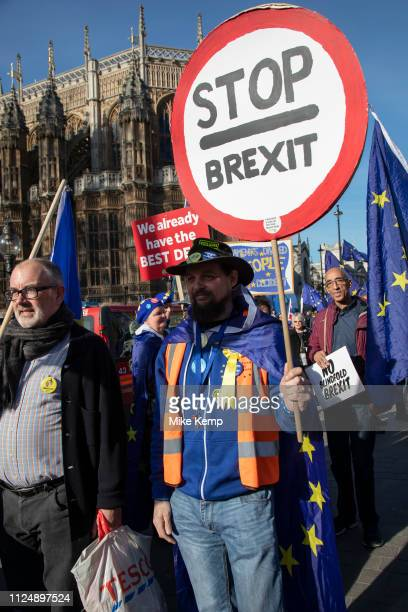 Anti Brexit pro Europe demonstrator with a stop Brexit placard at the protest in Westminster opposite Parliament as MPs debate and vote on amendments...