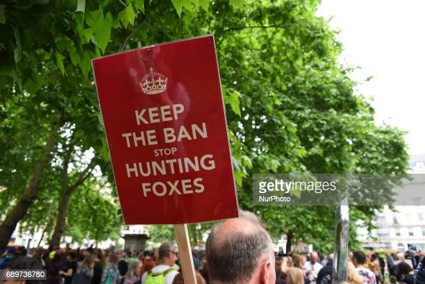 Anti fox hunting protesters march through the streets of London on May 29 to oppose British Prime Minister Theresa May's commitment to hold a free...