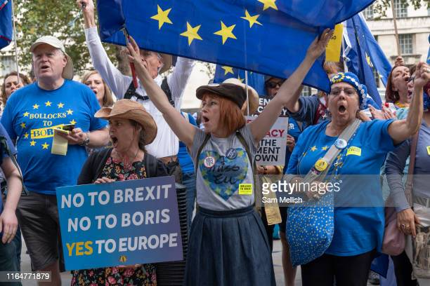 AntiBrexit campaigners outside the Cabinet Office on Whitehall on the 29th August 2019 in London in the United Kingdom A group gather outside the...