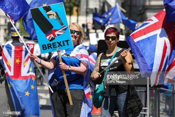 AntiBrexit demonstrators are seen with European flags and placards protesting outside the Houses of Parliament against the UK leaving the European...