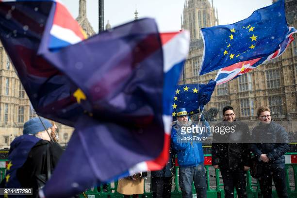 AntiBrexit demonstrators protest with flags during a snow flurry outside the Houses of Parliament on February 26 2018 in London England Labour Leader...
