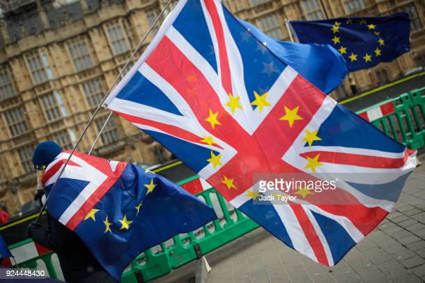 Anti-Brexit demonstrators protest with flags outside the Houses of Common on February 26, 2018 in London, England. Labour Leader Jeremy Corbyn's...