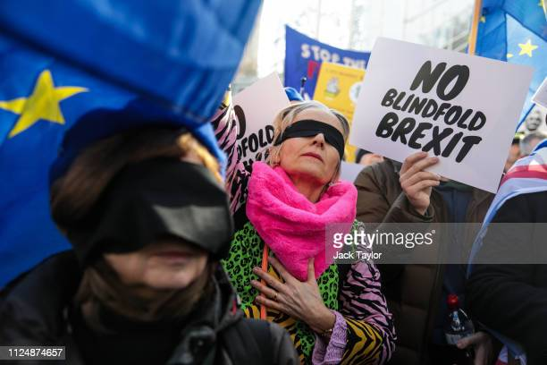AntiBrexit protesters demonstrate outside the Houses of Parliament on February 14 2019 in London England MPs are set to debate and vote on the next...