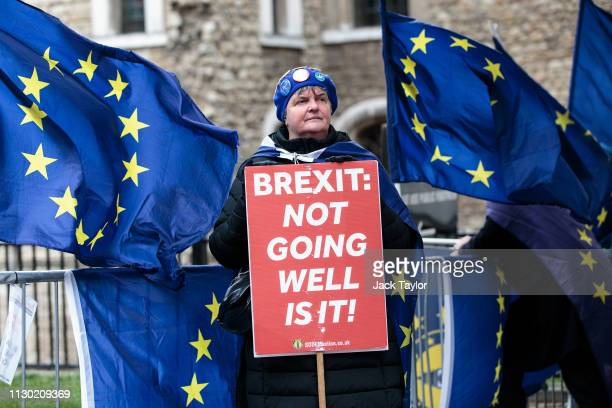 Anti-Brexit protesters demonstrate outside the Houses of Parliament on March 13, 2019 in London, England. Last night MPs voted 242 to 391 against...