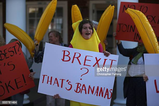 AntiBrexit supporters dressed as bananas protest outside York racecourse where Boris Johnson MP is addressing supporters during a Vote Leave rally at...