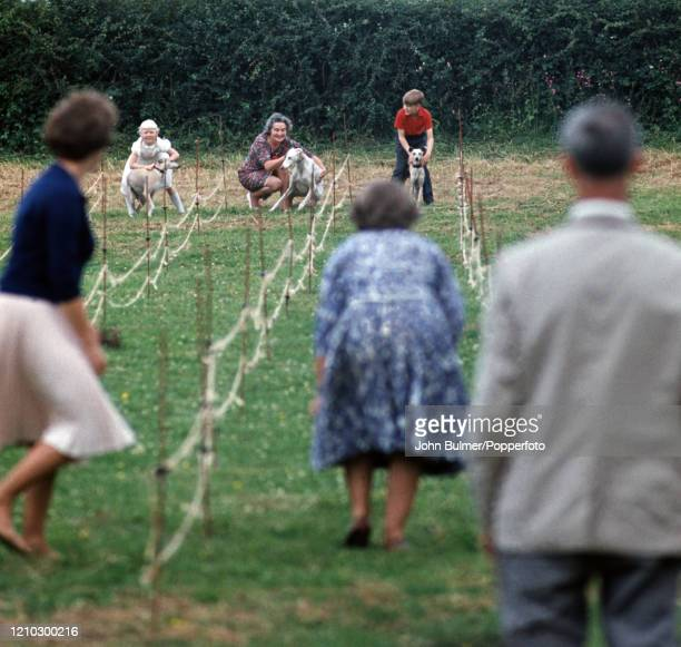 Anticipation at the start of a dog race during the chuch fete at Pembridge in England, circa June 1966. During the summer of 1966 British...
