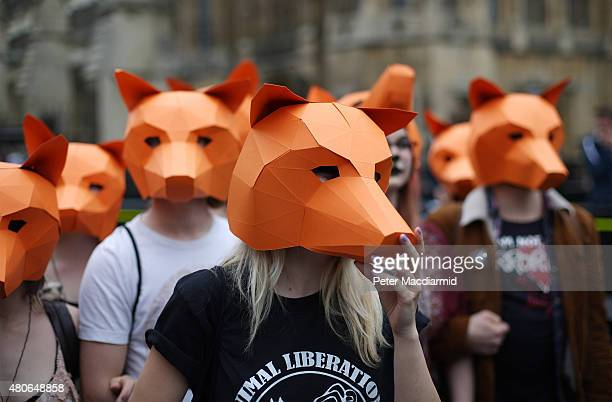 Anti-fox hunting protestors demonstrate outside Parliament on July 14, 2015 in London, England. The government's proposed legislation relaxing the...