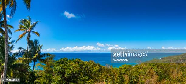 antilles, grenada, saint george's, view to caribbean sea with ronde and carriacou in the background - paisajes de isla de  granada fotografías e imágenes de stock