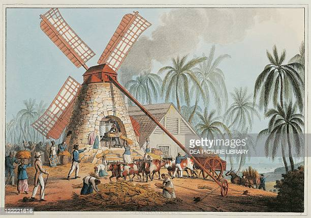 Antilles islands 19th century Slaves at work in a mill for the extraction of cane sugar