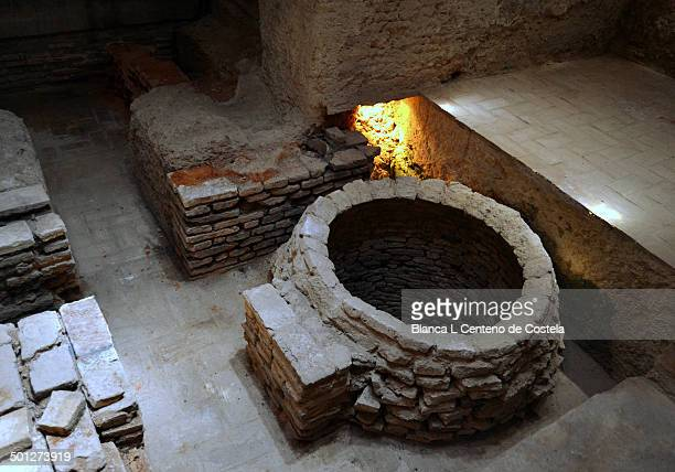 CONTENT] Antique Arab baths in the room called Hot baths for its proximity to the furnace in the Alcazar of Jerez de la Frontera The Alcazar of Jerez...