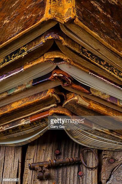 Antique book spines