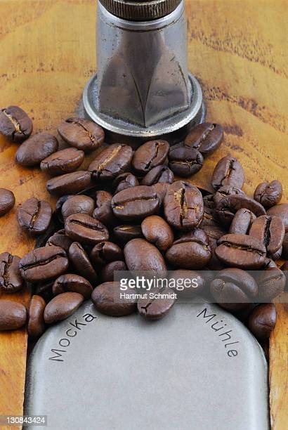Antique coffee mill, mocca mill, overflowing with coffee beans