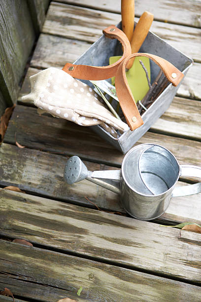 Antique gardening tools on damp wooden deck