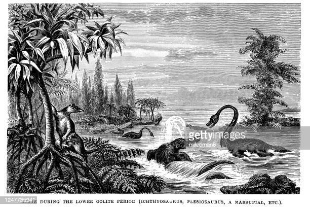 antique illustration of geology - antiquities stock pictures, royalty-free photos & images