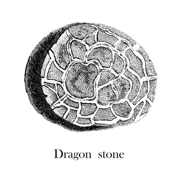 Antique Illustration of Septarian Nodule, Dragon Stone, Mineralogy