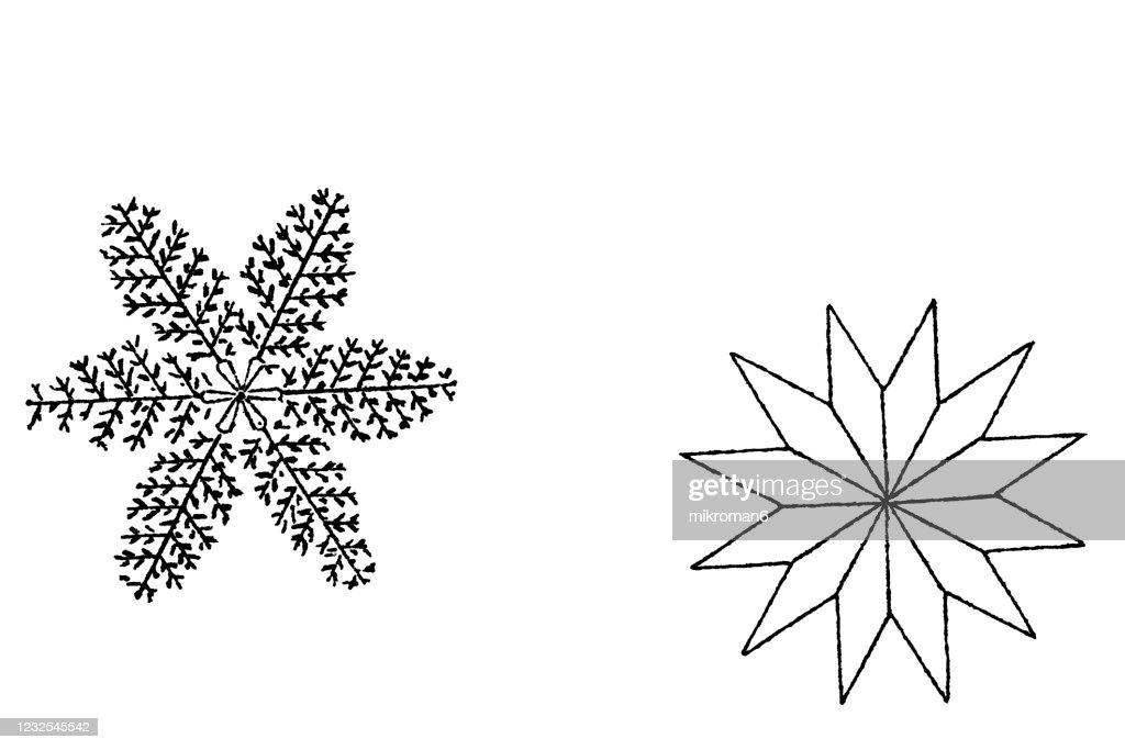 Antique Illustration Of Varieties Crystals Of Snow ...