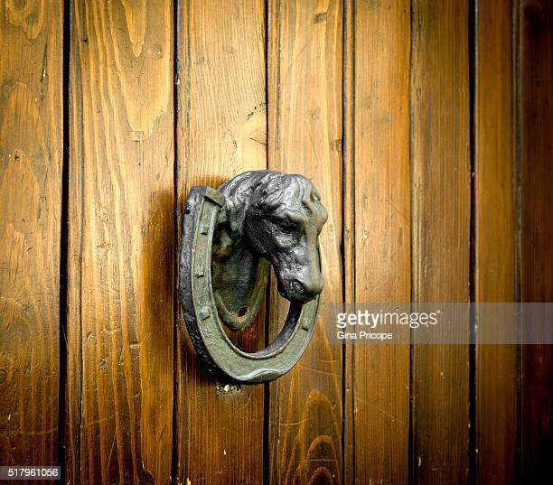 Antique knocker horse shaped close up.