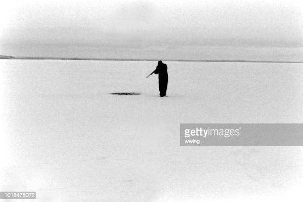 antique photo of seal hunter on ice - pic hunter stock pictures, royalty-free photos & images