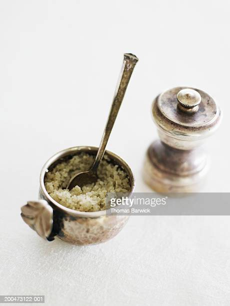 Antique silver pepper grinder beside bowl of sea salt with spoon
