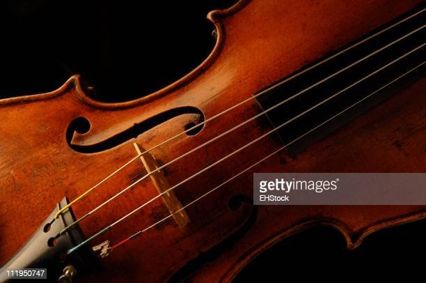 Antique Violin on black