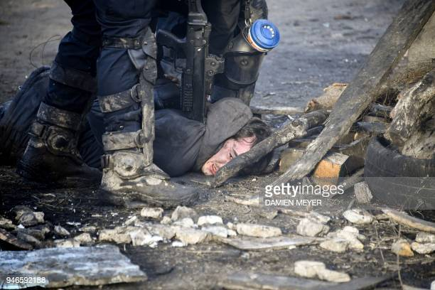 Anti-riot gendarmes arrest a protester during clashes at the ZAD decade-old anti-airport camp in Notre-Dame-des-Landes, western France, on April 15,...