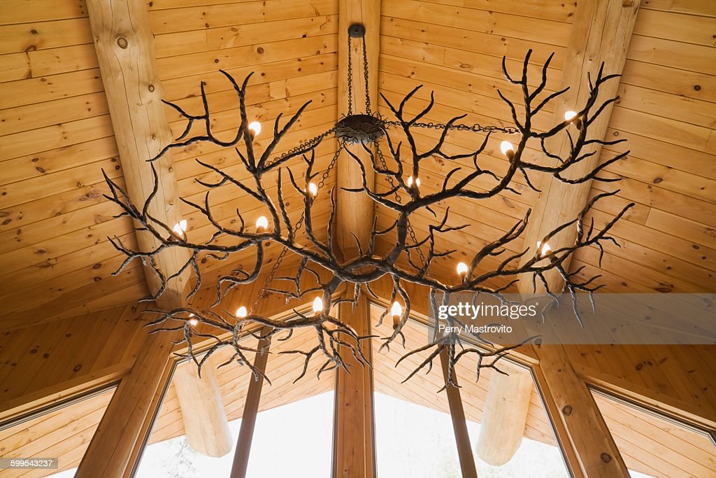 Antler Chandelier Hanging From Eastern White Pine Vaulted Ceiling In Log Cabin High Res Stock Photo Getty Images,Tiny House For Sale With Land In Maryland