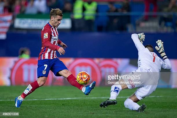 Antoine Griezmann of Atletico de Madrid strikes the ball against goalkeeper Ivan Cuellar of Real Sporting de Gijon during the La Liga mathc bewteen...