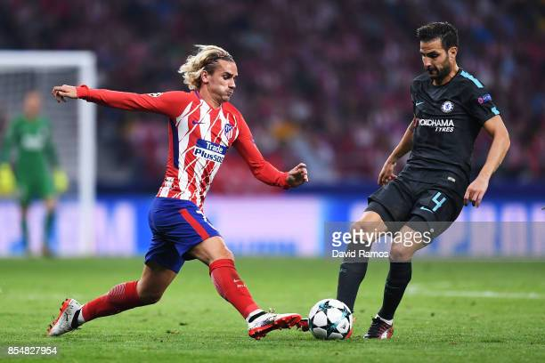 Antoine Griezmann of Atletico Madrid and Cesc Fabregas of Chelsea in action during the UEFA Champions League group C match between Atletico Madrid...