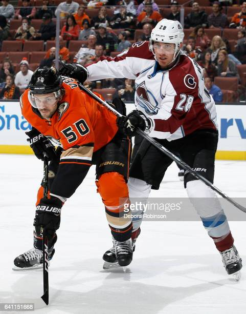 Antoine Vermette of the Anaheim Ducks battles for position against Patrick Wiercioch of the Colorado Avalanche during the game on January 31 2017 at...