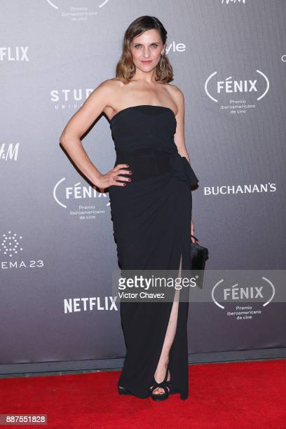 Antonia Zegers attends the Premio Iberoamericano De Cine Fenix 2017 at Teatro de La Ciudad on December 6 2017 in Mexico City Mexico