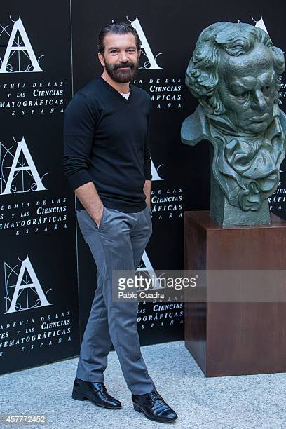 Antonio Banderas attends a photocall as the Spanish Cinema Academy announced him as the winner of the honorary Goya cinema award to be received next...