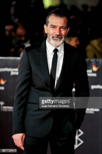 Antonio Banderas attends photocall during of the 20th Malaga Film Festival on March 25 2017 in Malaga Spain