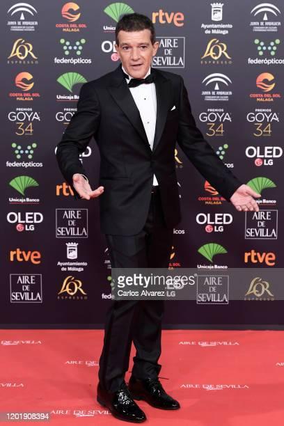 Antonio Banderas attends the Goya Cinema Awards 2020 during the 34th edition of the Goya Cinema Awards at Jose Maria Martin Carpena Sports Palace on...
