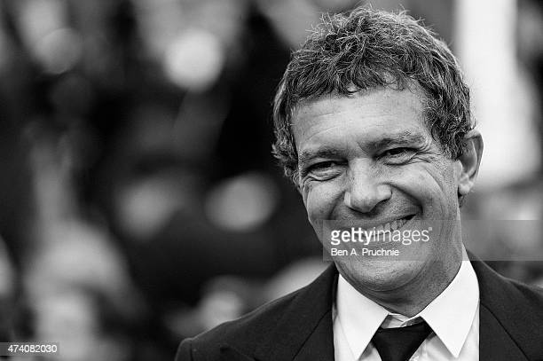 Antonio Banderas attends the Sicario Premiere during the 68th annual Cannes Film Festival on May 19 2015 in Cannes France
