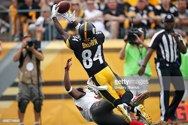 Antonio Brown of the Pittsburgh Steelers catches his second touchdown of the game during the second quarter against the Tampa Bay Buccaneers at Heinz...