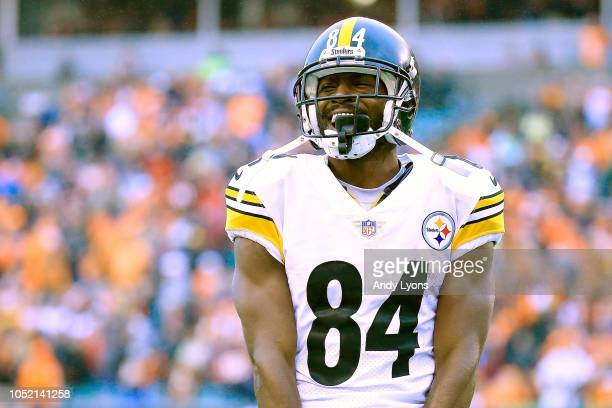 Antonio Brown of the Pittsburgh Steelers celebrates after scoring the game winning touchdown late in the fourth quarter of the game against the...