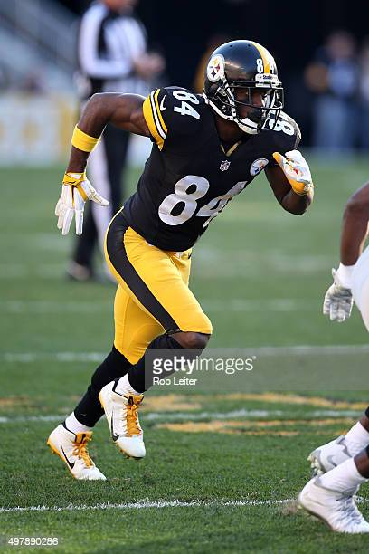 Antonio Brown of the Pittsburgh Steelers in action during the game against the Oakland Raiders at Heinz Field on November 8 2015 in Pittsburgh...