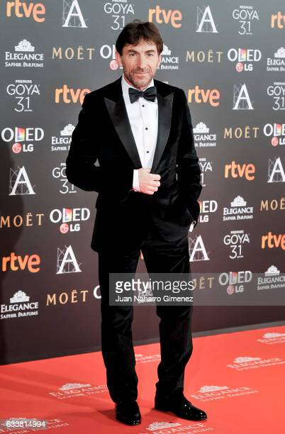 Antonio de la Torre attends the 31st edition of the 'Goya Cinema Awards' ceremony at Madrid Marriott Auditorium on February 4 2017 in Madrid Spain