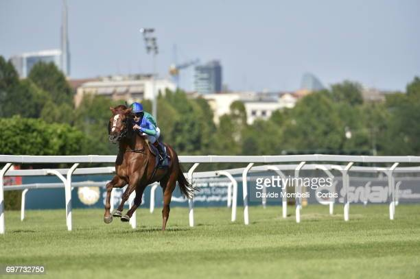 Antonio Fresu riding the Arabian breed horse Lightning Bolt during Milan President of the UAE CUP on June 18 2017 in Milan Italy