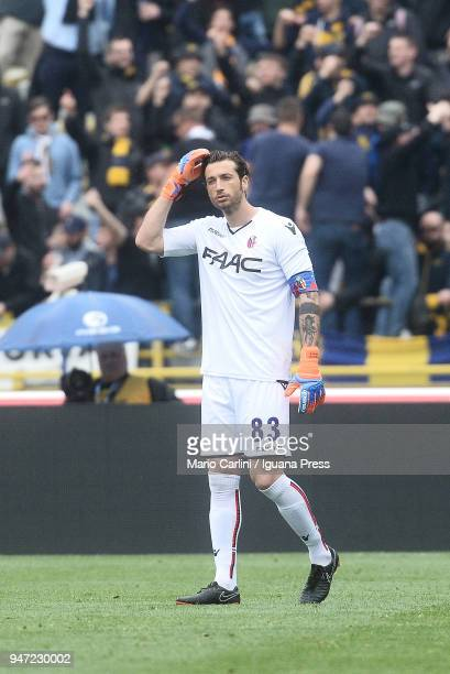 Antonio Mirante goalkeeper of Bologna FC reacts during the serie A match between Bologna FC and Hellas Verona FC at Stadio Renato Dall'Ara on April...