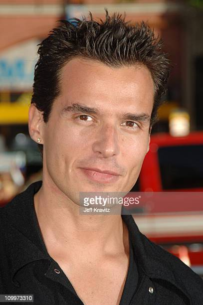 Antonio Sabato Jr during Batman Begins Los Angeles Premiere Arrivals at Grauman's Chinese Theater in Hollywood California United States