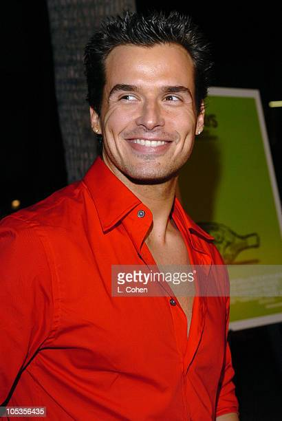 Antonio Sabato Jr during Sideways Los Angeles Premiere Red Carpet at Academy of Motion Pictures Arts and Sciences in Beverly Hills California United...
