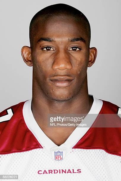 Antrel Rolle of the Arizona Cardinals poses for his 2005 NFL headshot at photo day in Tempe Arizona